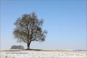 Sonnige Winterwetter auf der Hohenloher Ebene