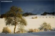 m3_103266_winterland_fb