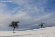 m3_104766_winter_fb.jpg