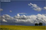 m3_819243_feld_fb.jpg