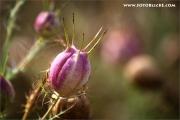 m3_105998_herbst_fb.jpg