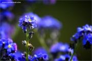 m3_107966_ma_fb.jpg