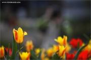 m3_107978_ma_fb.jpg