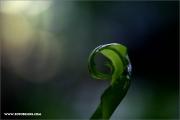 m3_120659_farn_fb.jpg
