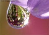 c20_544075_tropfen_fb.jpg