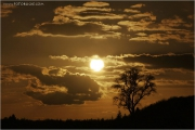 c21_717958_su_fb.jpg