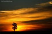 m3_107713_sa_fb.jpg