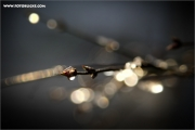 m3_893831_winter_fb.jpg