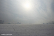 m3_104465_winter_fb.jpg