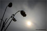 m3_104441_winter_fb.jpg