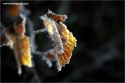 m3_127389_winter_fb.jpg