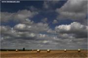 c21_729306_rollen_fb.jpg