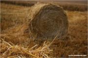 m3_824633_rollen_fb.jpg