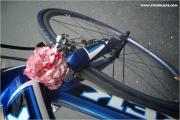 d-tour_2009_08_14_p0405_fb.jpg