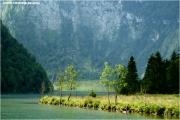2011_08_19_0105_fb.jpg