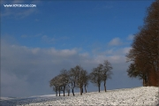 d100_165233_winter_fb