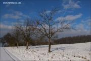 d100_165237_winter_fb