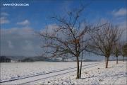 d100_165263_winter_fb