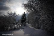 d100_165314_winter_fb