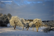 m3_103232_winter_fb