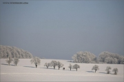 m3_108998_winterland_fb.jpg