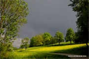 m3_116348_hohenlohe_fb.jpg