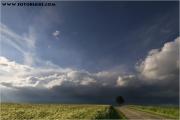 c20_652038_baum_fb.jpg