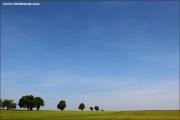 d600_110233_baumreihe_fb.jpg