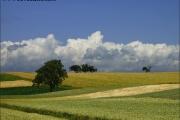 c00956_landschaft_fc.jpg