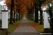 d600_131902_nl_fb.jpg