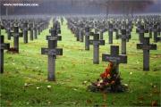d600_131705_nl_fb.jpg