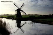 d600_133475_nl_fb.jpg