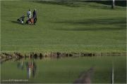 c21_719947_golf_fb.jpg