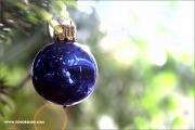 d100_141492_weihnachten_fb.jpg
