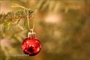m5_173818_weihnachten_fb