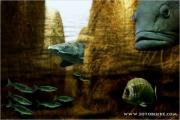 unterwasser_05_fb.jpg