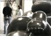 c20_616286_museum_fb.jpg