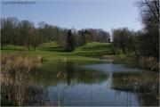c21_719959_golf_fb.jpg