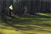 c21_719981_golf_fb.jpg