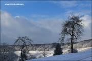 d100_165481_winter_fb