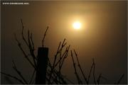 c21_810683_su_fb.jpg