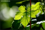 m3_119717_blatt_fb
