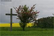 c21_693014_kreuz_fb.jpg