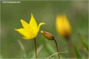 m3_815958_witulpe_fb.jpg