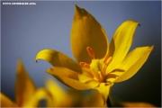 m3_818182_witulpe_fb.jpg