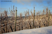 m3_103227_winter_fb.jpg